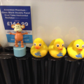 2015-0503-01 Ducks at Grand Designs