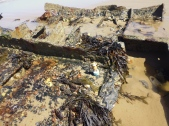 2015-0704-09 Cromer Shipwreck