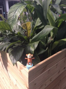 2015-0801-01 Jungle at Stratford International