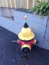 2015-10-13 Boston fire hydrant