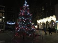 2015-1128-02 Christmas tree