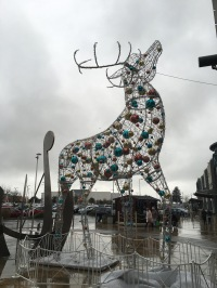 2016-0103 Reindeer.jpg