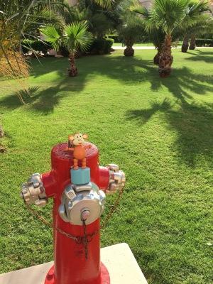 2016-0114-03 Fire hydrant.jpg