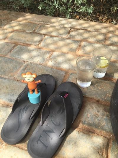 2016-0114-05 Poolside relaxation.jpg