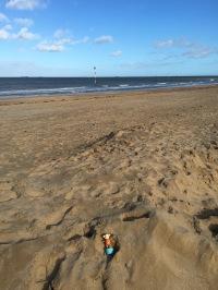 2016-0207-03 Sand mound.jpg