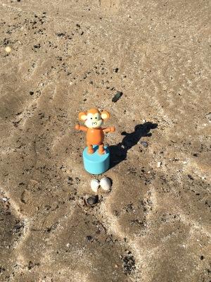 2016-0417-03 Two shells.jpg