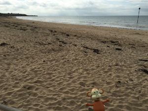 2016-0612-04 Beach.jpg