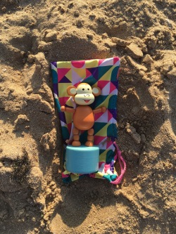 2016-0813-03 Sand bathing.jpg