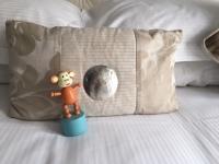 2016-0903-01 Shell pillow.JPG