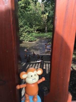 2016-0927-01 Tynwald Park.jpg