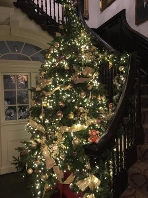 2016-1223-03 Christmas tree.jpg