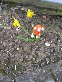 170318-01 Daffodil.jpg