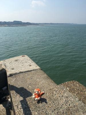 170827-05 Harbour Arm.jpg