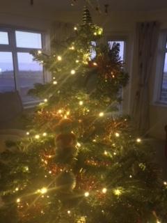 171222-01 Christmas tree.JPG