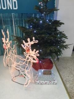 171222-05 Dreamland reindeer.JPG
