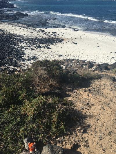 1801-06 Beach.jpg
